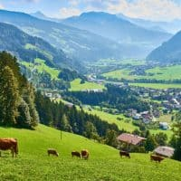 Tesla-Niederlassung in Tirol geplant