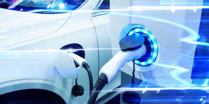 Regierung forder E-Auto Quote
