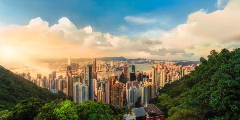 Hongkong streicht Subventionen für Tesla
