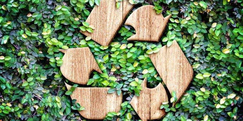 ReCell erdenkt Recycling neu