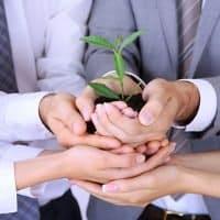 BASF gründet Unternehmen für Batteriematerialien