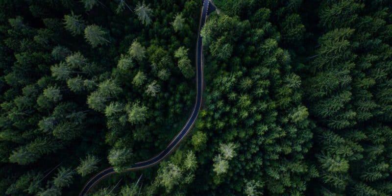 Studie: 280 Millionen E-Autos bis 2040