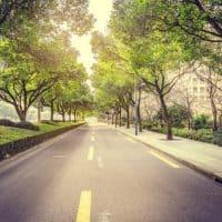 Grüne fordern Quote für E-Autos