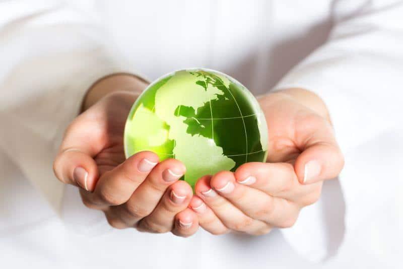 Klimaschutz - so wollen die Grünen ihre Ziele erreichen