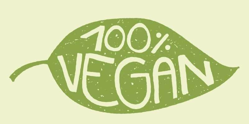Tesla Model 3 und Model Y ab 2020 vegan