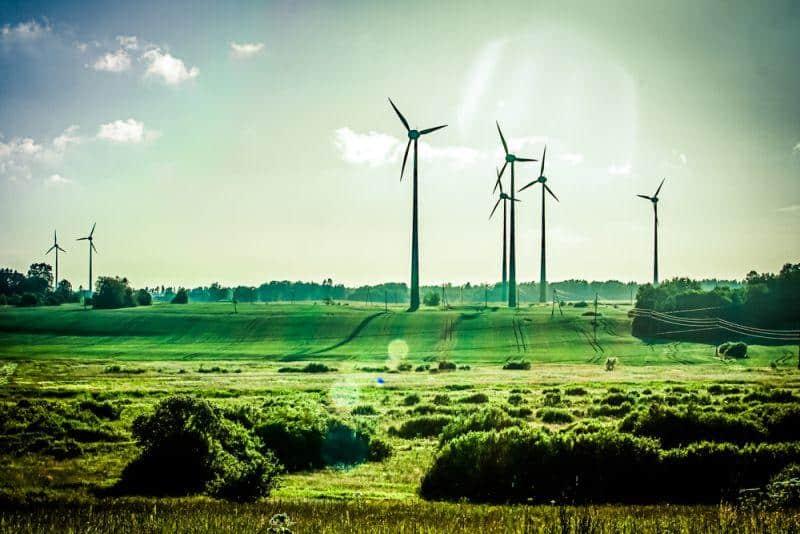 Ökostrom erfährt steigende Nachfrage