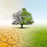 Klimaschutzgesetz muss allumfassend betrachtet werden