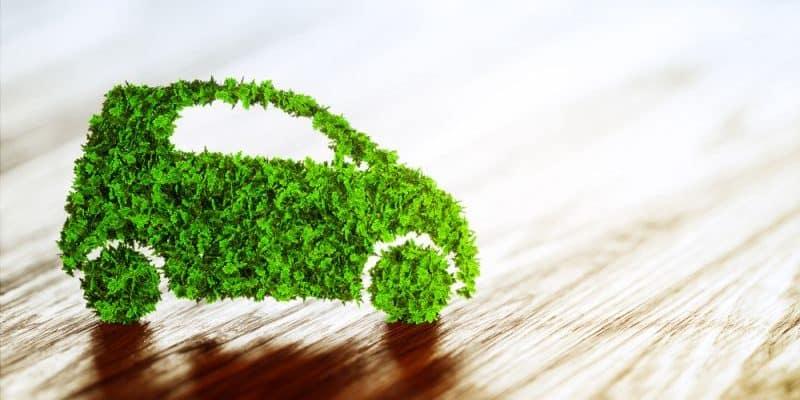 Wasserstoff versus Elektroauto