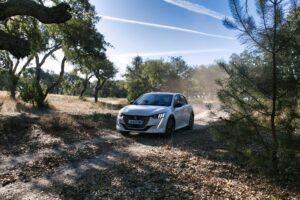 Peugeot e-208 - Test- und Erfahrungsbericht