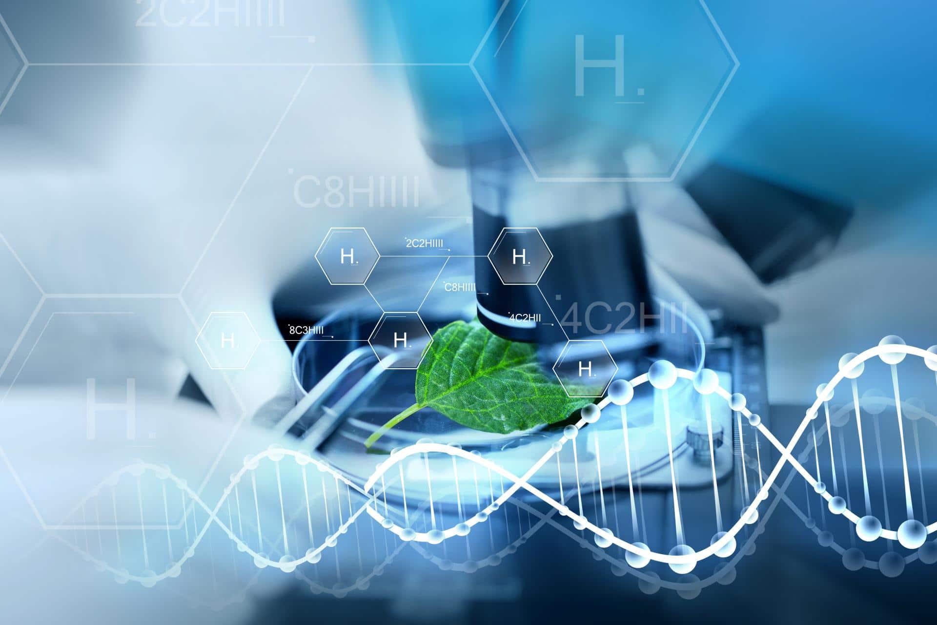 VCD fordert maßvollen und nachhaltigen Einsatz von Wasserstoff