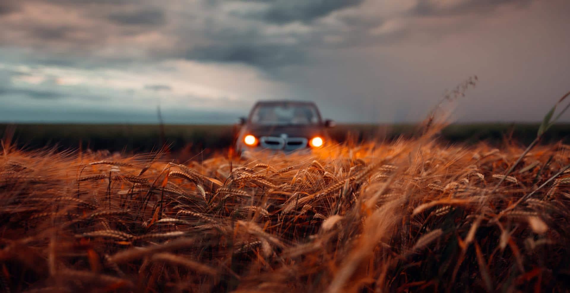 Aktueller Global EV Outlook erwartet 245 Millionen E-Fahrzeuge bis 2030
