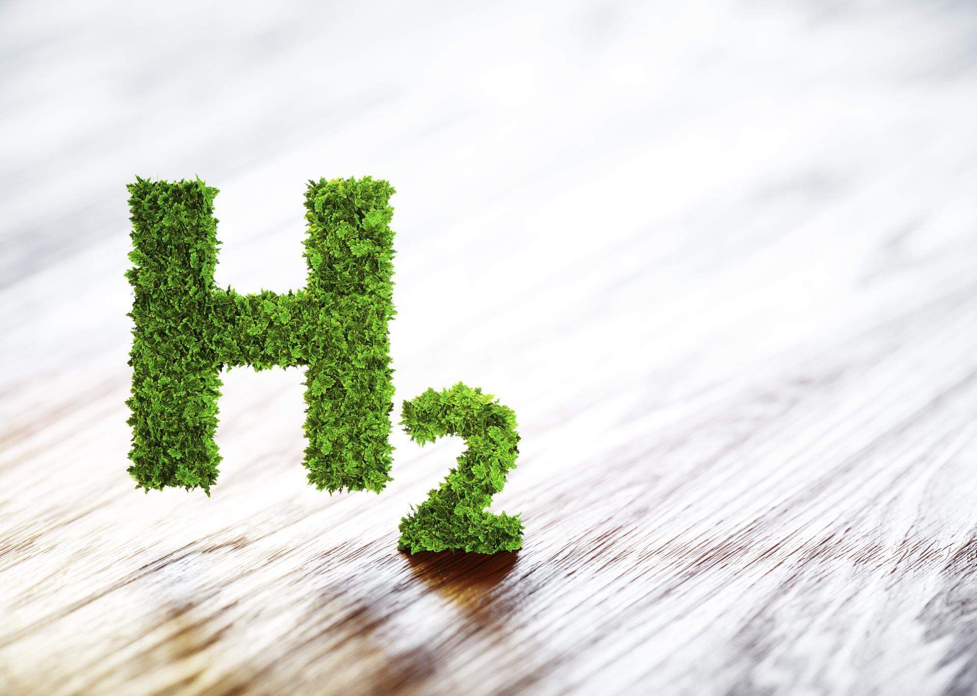Bundesregierung verabschiedet Nationale Wasserstoffstrategie und beruft Nationalen Wasserstoffrat