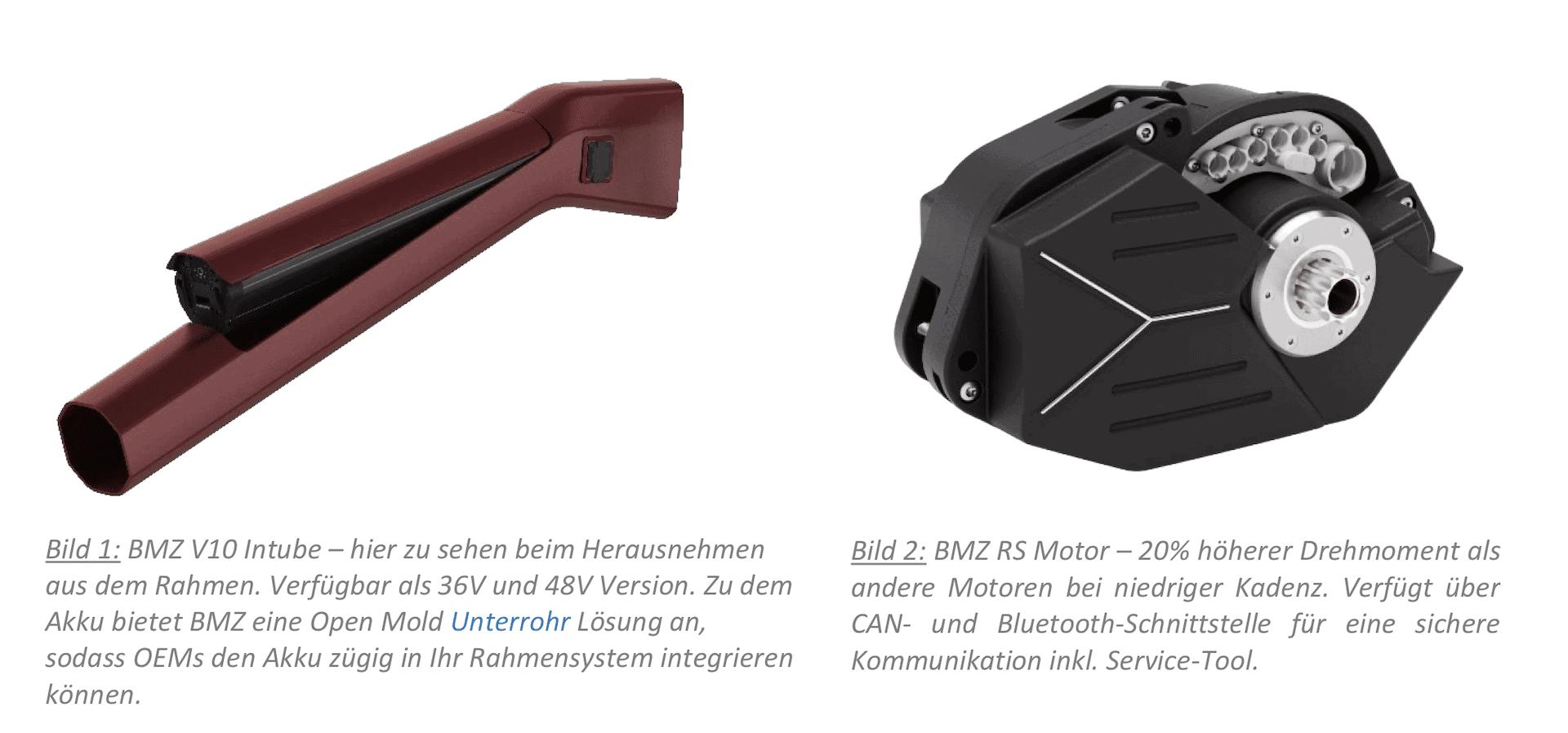 BMZ E-Bike Pedelec Akku Motor