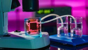 Schweizer Forscher machen Brennstoffzellen für Wasserstoff-Autos langlebiger