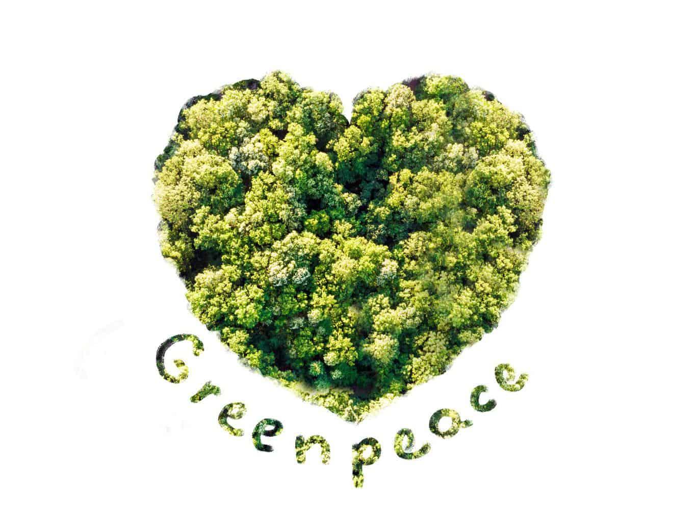 Greenpeace wirft VW Täuschung bei Kompensation von CO2 vor