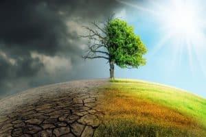 "Klimawandel avanciert zum ""Top-Thema"" im Transport- und Logistiksektor"