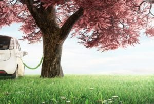 Elektroauto-Kaufprämie / Umweltbonus: Das musst du wissen!