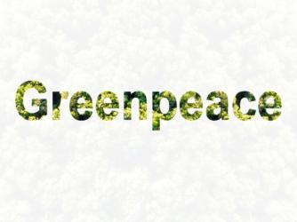 Greenpeace: Zu viele Schlupflöcher bei CO2-Ausstoß-Bewertung