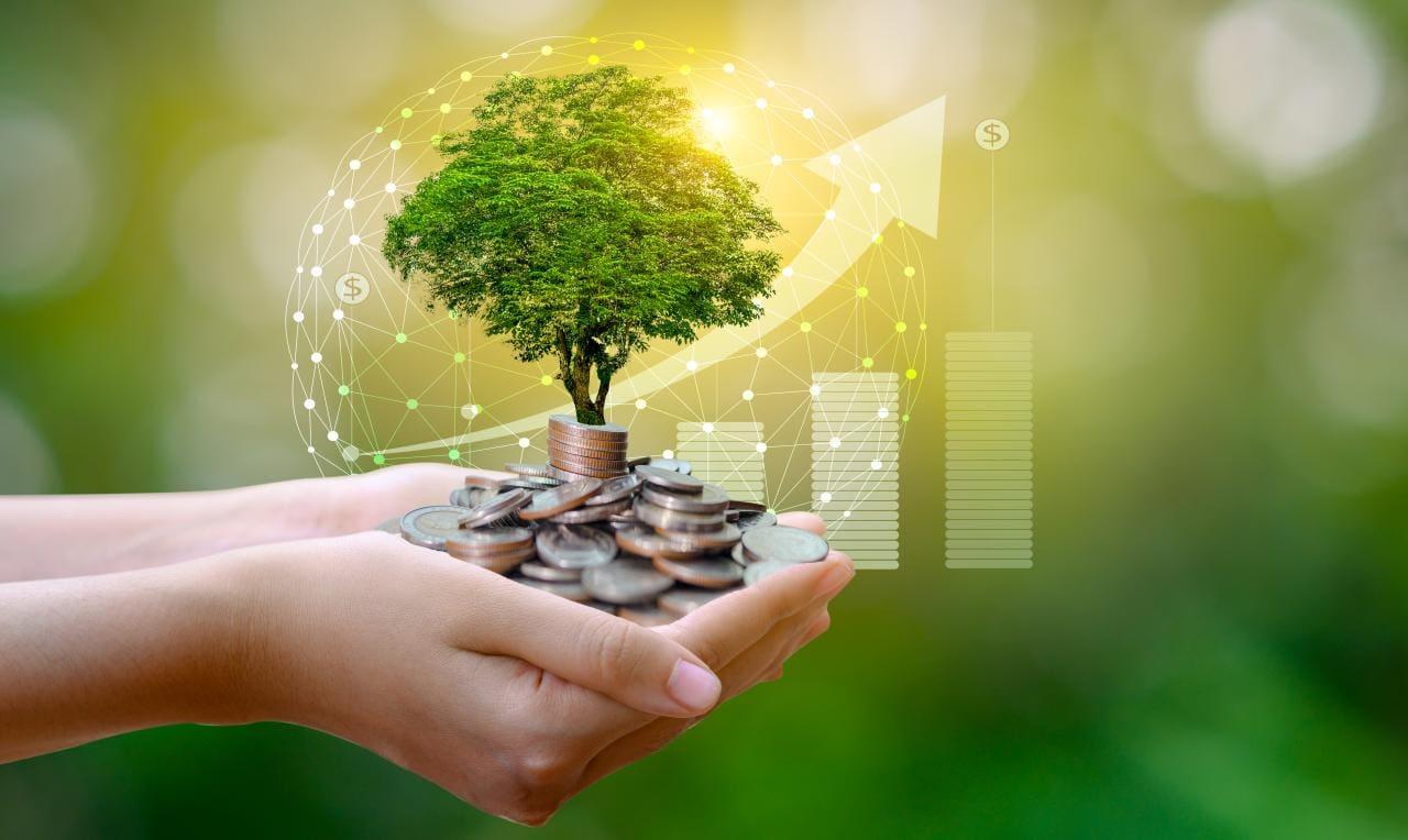 Warum nicht nur Dein E-Auto, sondern auch Dein Bankkonto nachhaltig sein sollte